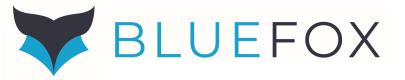 BlueFox Data Consulting